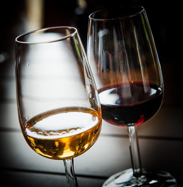 Degustace vína Brno